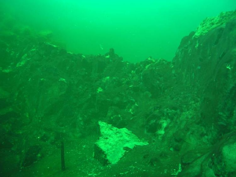 030909_cyanobacterial