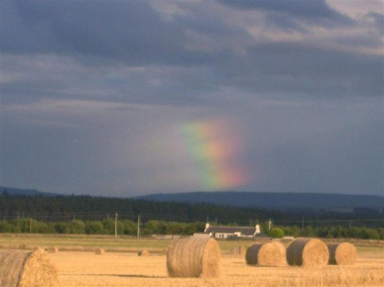 Rainbowfragment
