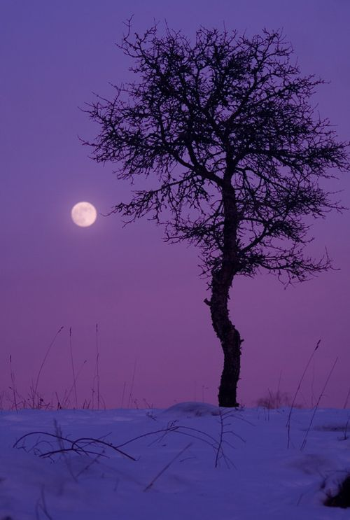 Snow_moon_rising_epod