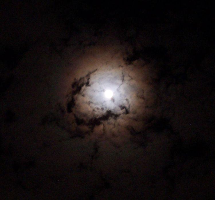 Lunar_corona_-_1