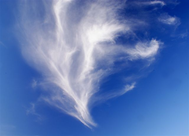 030509_feather_sky