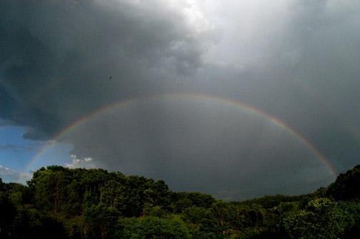 Rainbow_wheel_52305