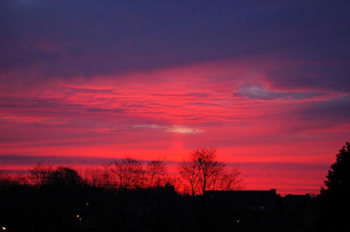 Sunrise-m