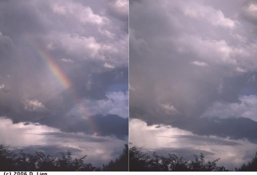 Rainbow-polarized-72dpi
