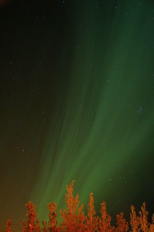 Icelandicaurora copy