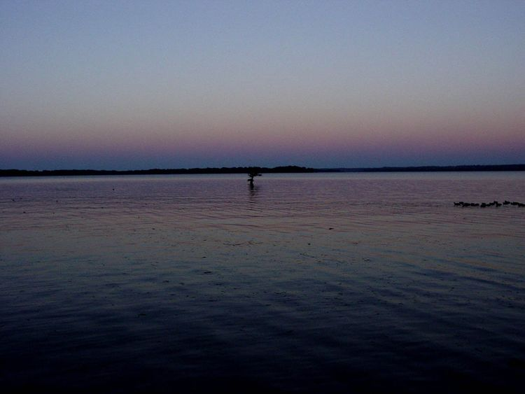 Belt_of_venus-reelfoot_lake copy
