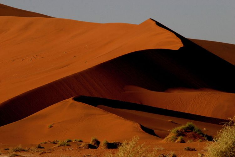 Namib copy