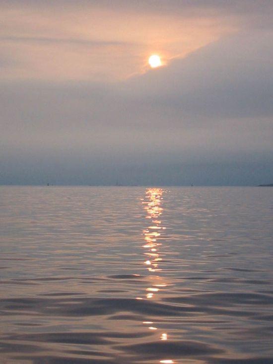 Harbor-sun_rising_over_fog_bank copy