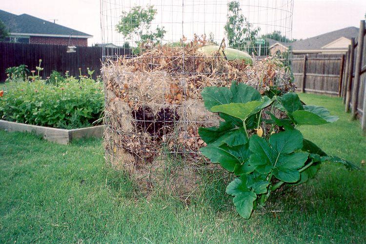Compost_surprise