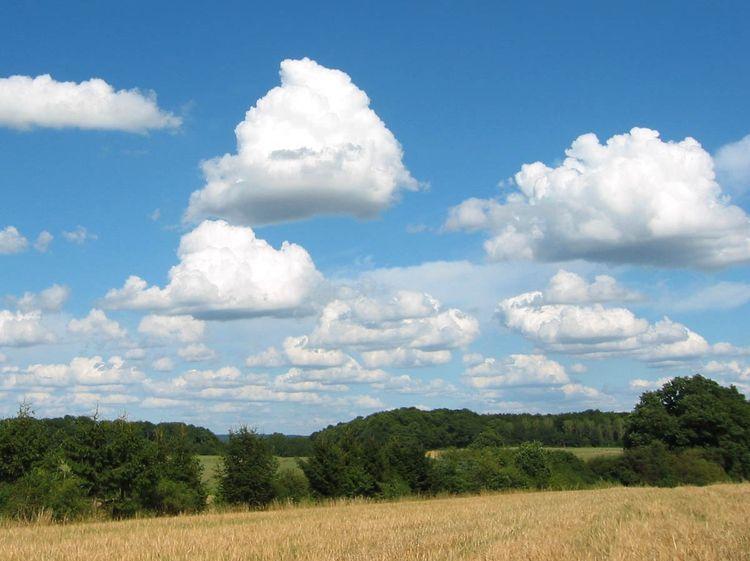 cumulus mediocris clouds epod a service of usra
