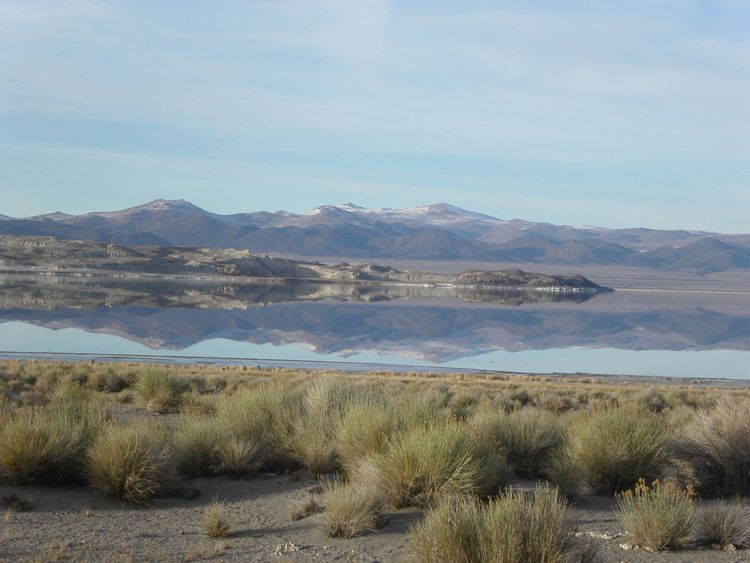 Jan_29th,_04__mono_lake,_saturn_on_tioga_pass_010 copy