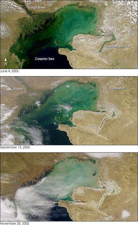 Caspian_sea_2002329