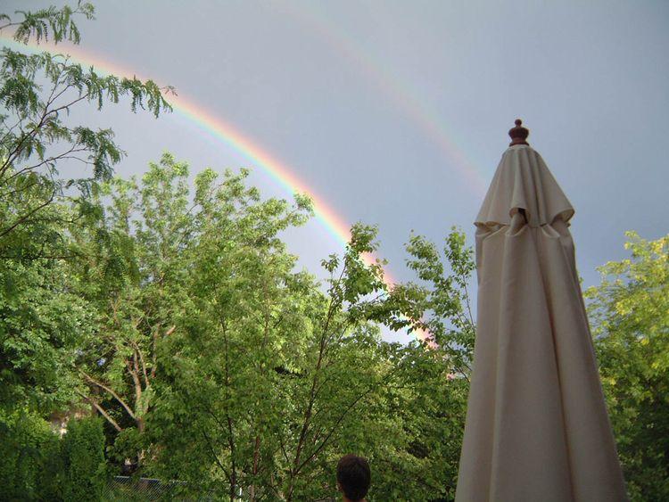 Rainbow_2 copy